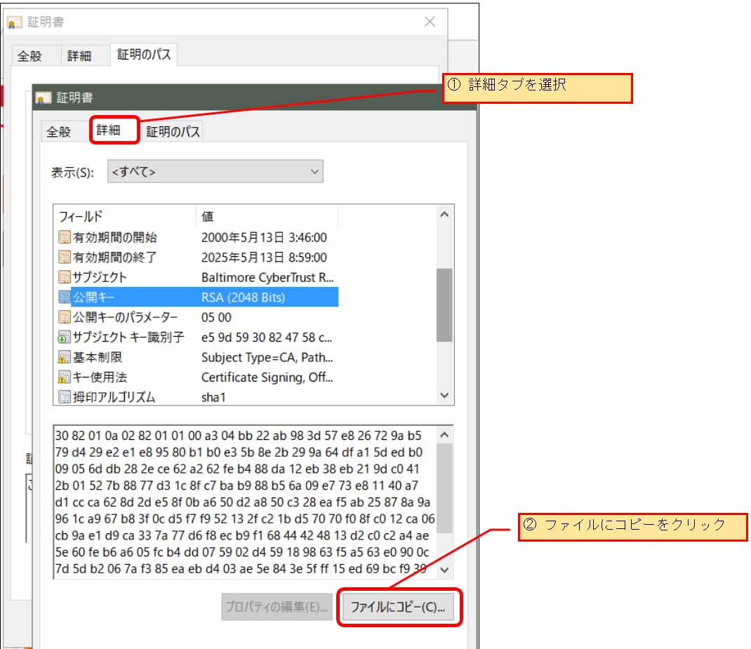 esp32_wificlientsecure07.jpg