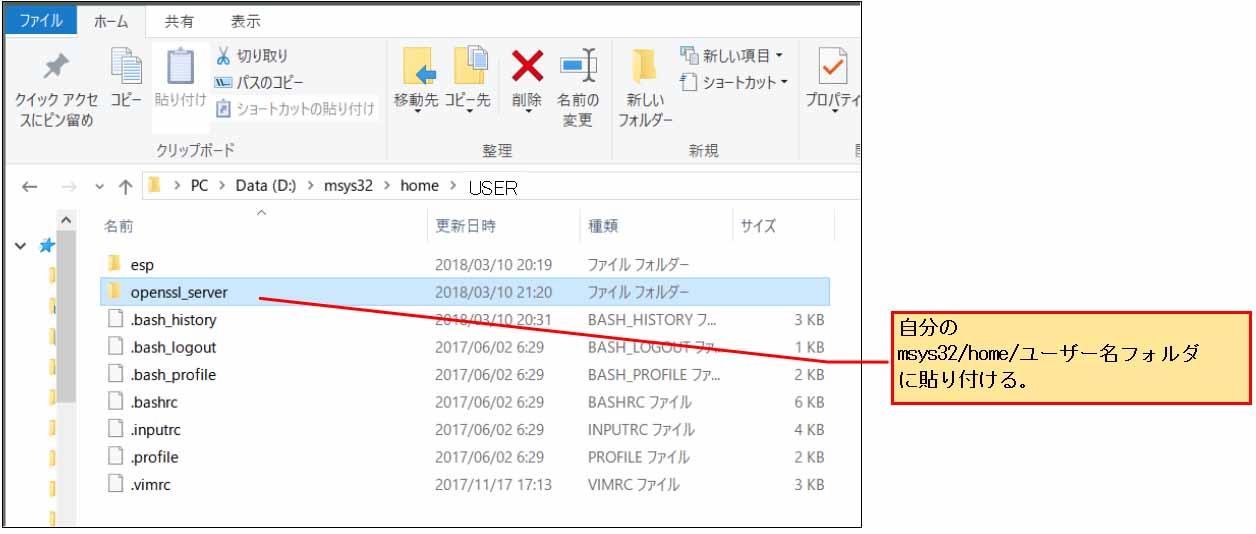 esp_idf_openssl_server11.jpg