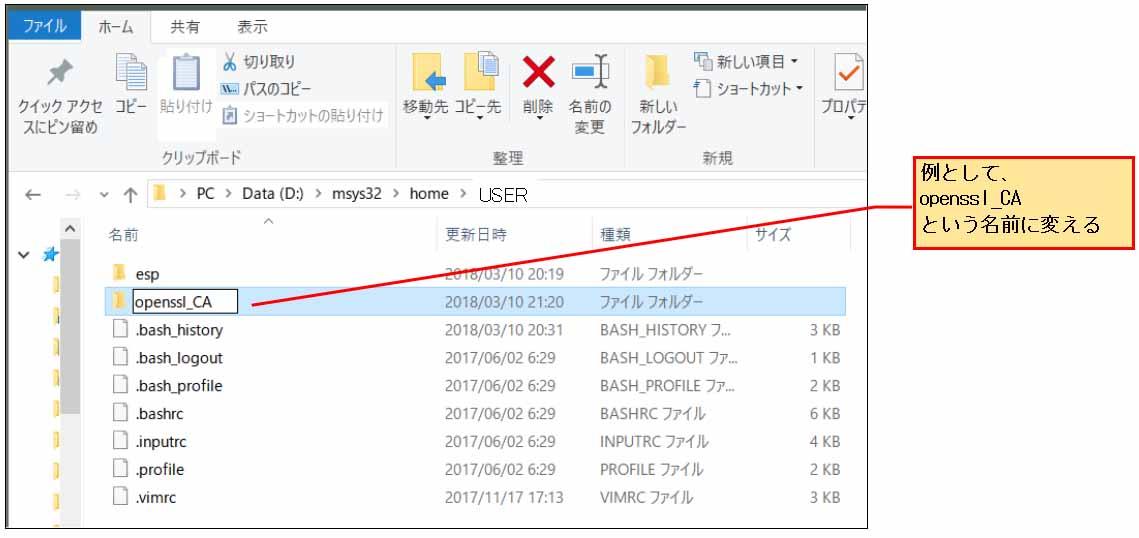 esp_idf_openssl_server12.jpg
