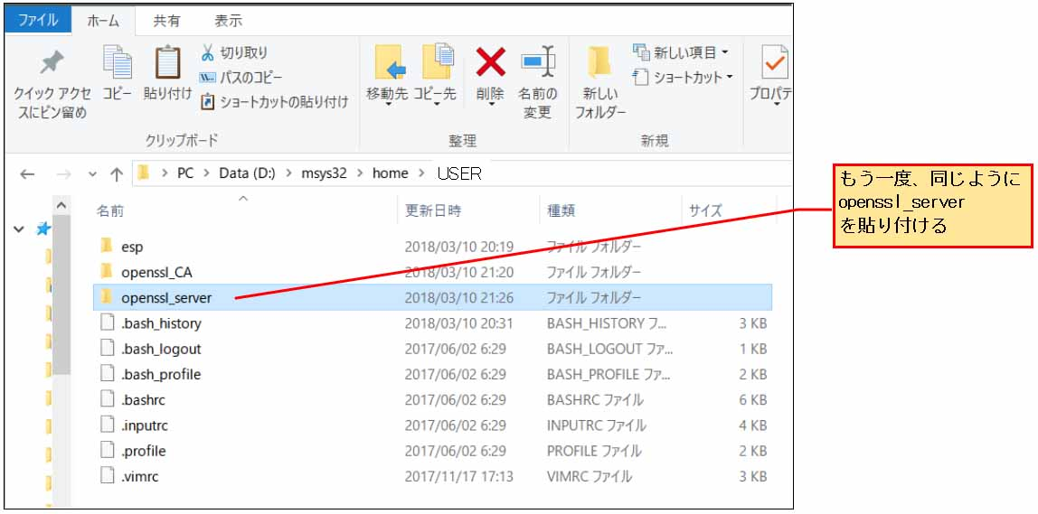 esp_idf_openssl_server13.jpg