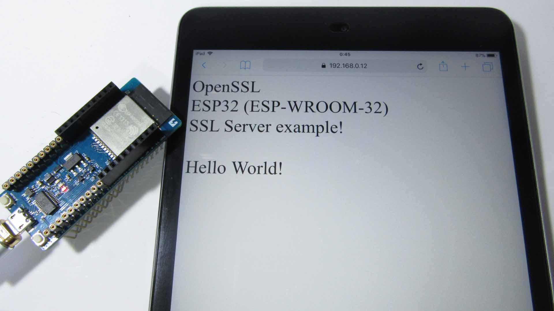 esp_idf_openssl_server99.jpg