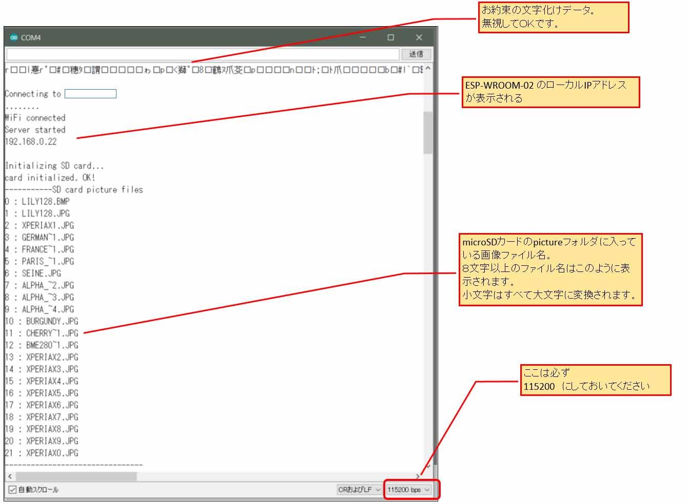 sd_pic_07.jpg