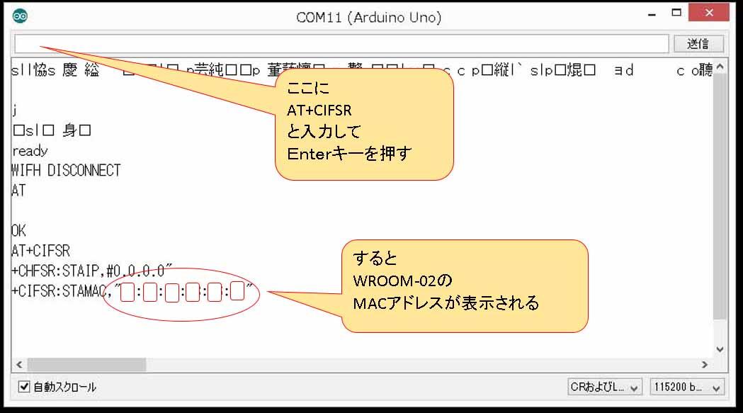 wroom_main_04.jpg